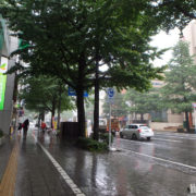 梅雨本番の広瀬通