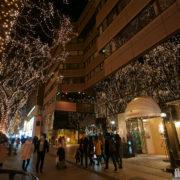 寒い冬の夜を暖かく灯す定禅寺通のページェント